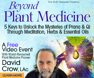 Activate Your Master Prana Breathing Through Herbs, Oils with David Crow